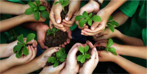 alunos-meio ambiente